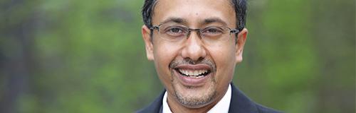 Prof. Dr. Soumit Sain